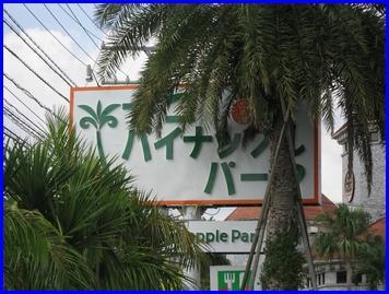 nagopain-2009-9-10.jpg