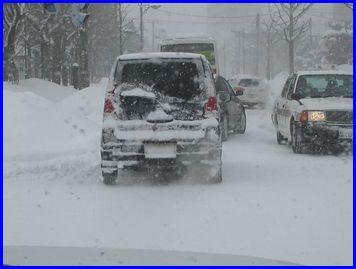 snow-2009-2-21.jpg
