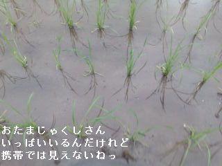 20080624180936.jpg