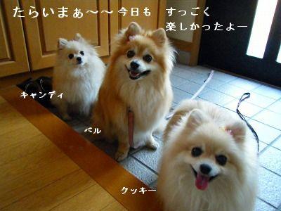 s-2009_04134pome0004.jpg