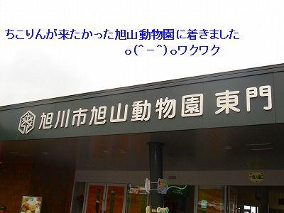 s-DSC03234.jpg
