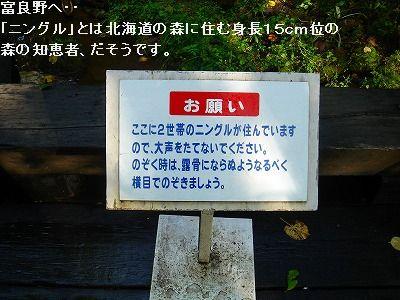 s-DSC03293.jpg