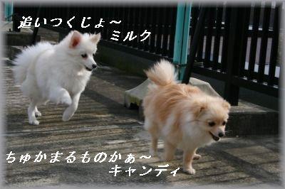 s-IMG_0462.jpg
