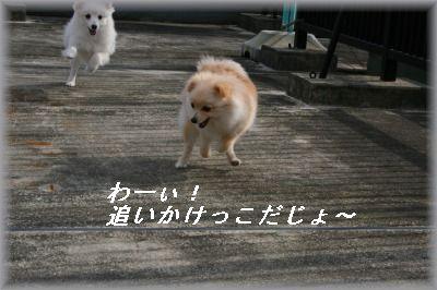 s-IMG_0464.jpg