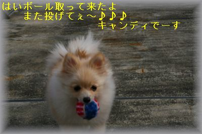 s-IMG_0480.jpg