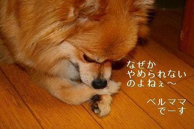 s-IMG_0499.jpg