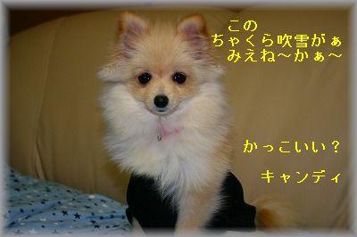 s-IMG_0586.jpg