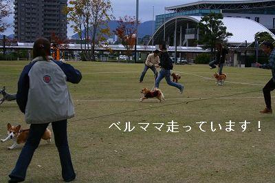 s-IMG_0607.jpg