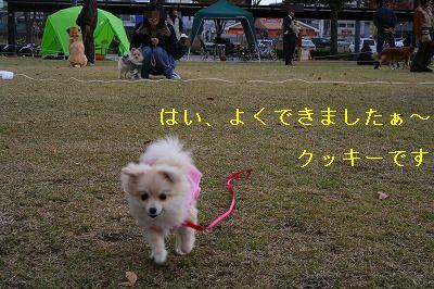 s-IMG_0619.jpg