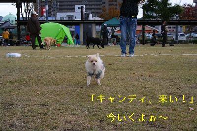 s-IMG_0621.jpg