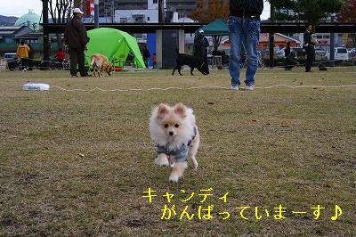 s-IMG_0622.jpg