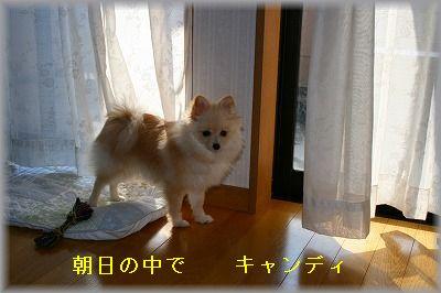 s-IMG_0726.jpg