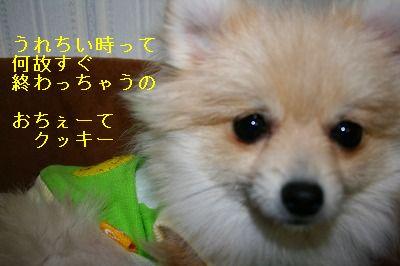 s-IMG_0819.jpg