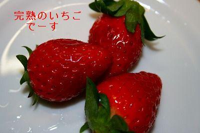 s-IMG_0927.jpg