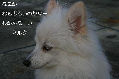 s-IMG_1083.jpg