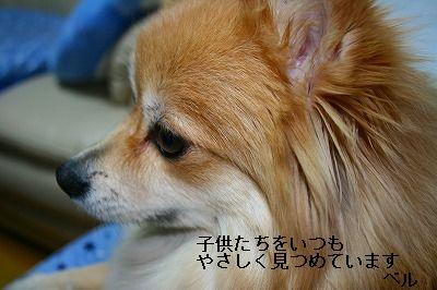 s-IMG_1609.jpg