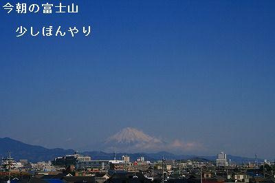 s-IMG_1649.jpg