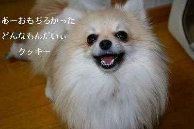 s-IMG_2042.jpg