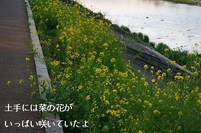s-IMG_2106.jpg