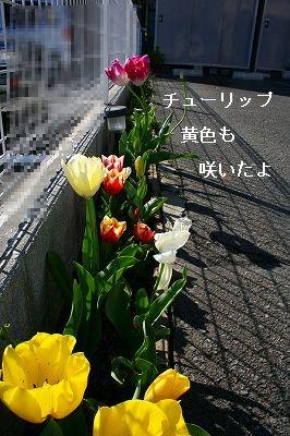 s-IMG_2139.jpg