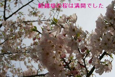 s-IMG_2154.jpg