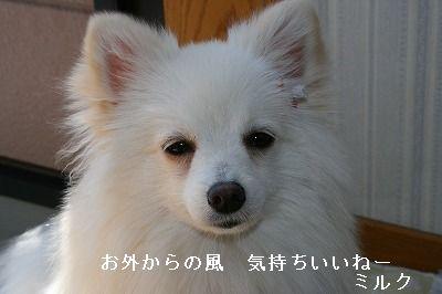 s-IMG_2278.jpg