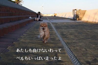 s-IMG_2310.jpg