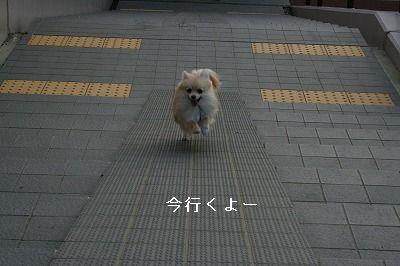s-IMG_2399.jpg