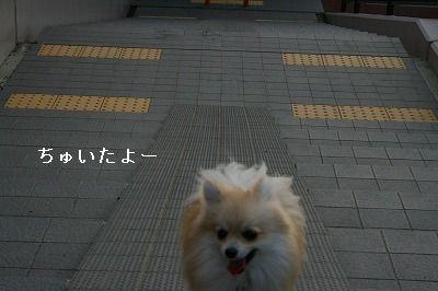 s-IMG_2401.jpg
