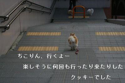 s-IMG_2402.jpg