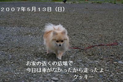 s-IMG_2651.jpg