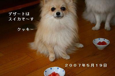 s-IMG_2680.jpg