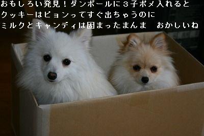 s-IMG_2789.jpg