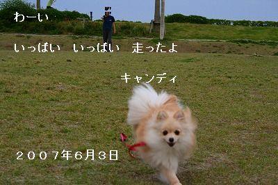 s-IMG_2797.jpg