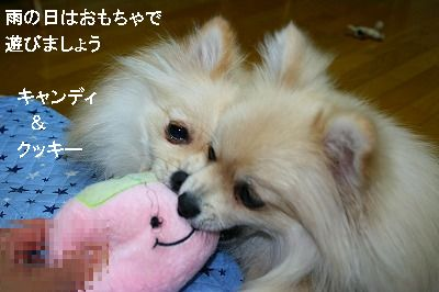s-IMG_2889.jpg