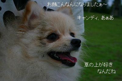 s-IMG_3102.jpg