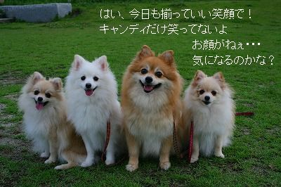s-IMG_3104.jpg
