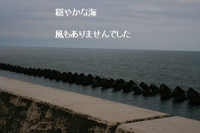s-IMG_3117.jpg