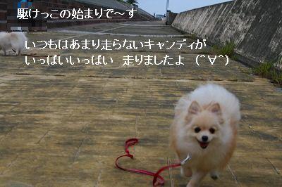 s-IMG_3123.jpg