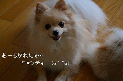 s-IMG_3209.jpg