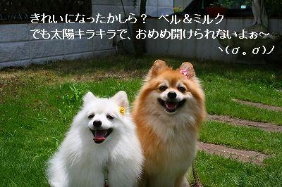 s-IMG_3216.jpg