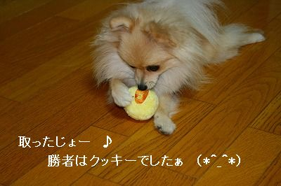 s-IMG_3245.jpg