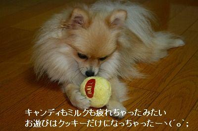 s-IMG_3246.jpg