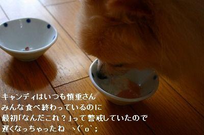 s-IMG_3262.jpg
