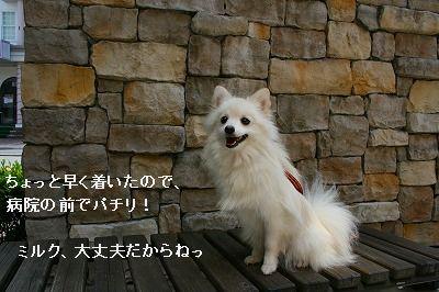 s-IMG_3515.jpg