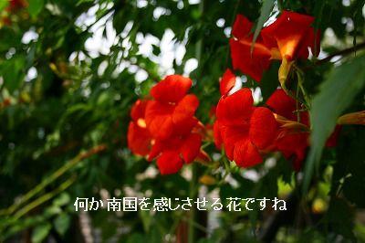 s-IMG_3518.jpg