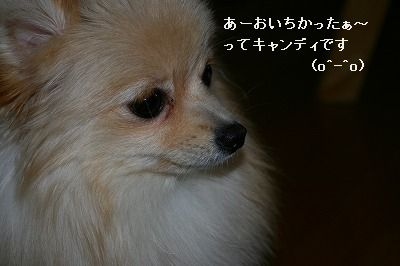 s-IMG_3525.jpg