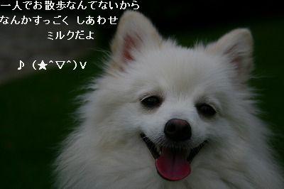 s-IMG_3541.jpg