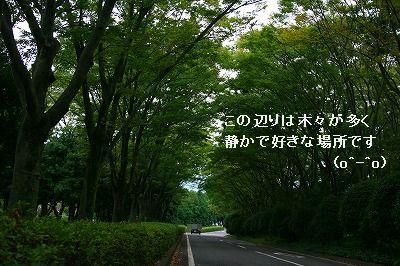 s-IMG_3545.jpg