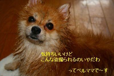 s-IMG_3570.jpg